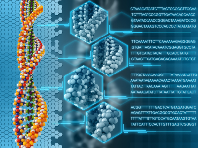 DNA-analysis_iStock-Photo